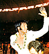 Elvis_presley_collection_001